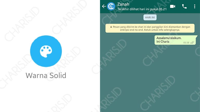 background whatsapp dengan warna solid