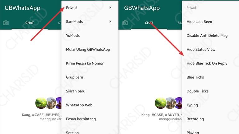 fitur privasi whatsapp mod